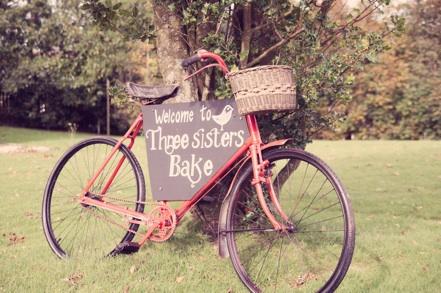 Bike against tree